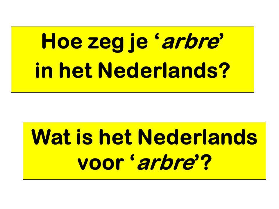 Hoe zeg je 'arbre' in het Nederlands? Wat is het Nederlands voor 'arbre'?