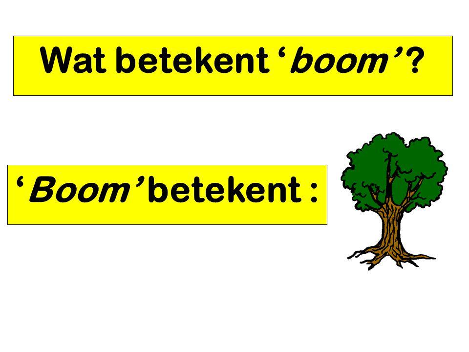 Wat betekent 'boom' ? 'Boom' betekent :