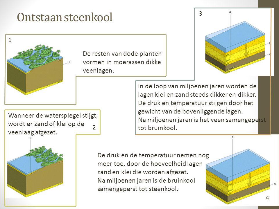 Ontstaan steenkool De resten van dode planten vormen in moerassen dikke veenlagen. Wanneer de waterspiegel stijgt, wordt er zand of klei op de veenlaa