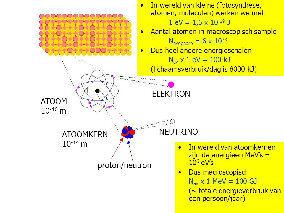 Materie MATERIE ELEKTRON ATOOM 10 -10 m MATERIE ELEKTRON ATOOM 10 -10 m ATOOMKERN 10 -14 m NEUTRINO In wereld van atoomkernen zijn de energieen MeV's