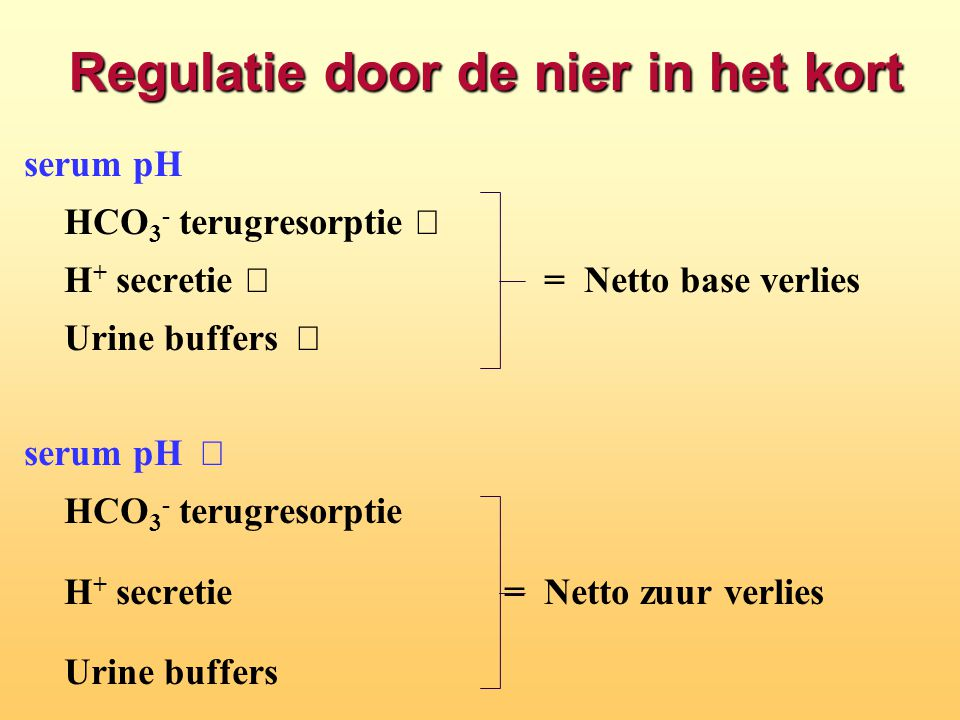 Regulatie door de nier in het kort serum pH  HCO 3 - terugresorptie  H + secretie  =Netto base verlies Urine buffers  serum pH  HCO 3 - terugresorptie  H + secretie  = Netto zuur verlies Urine buffers 