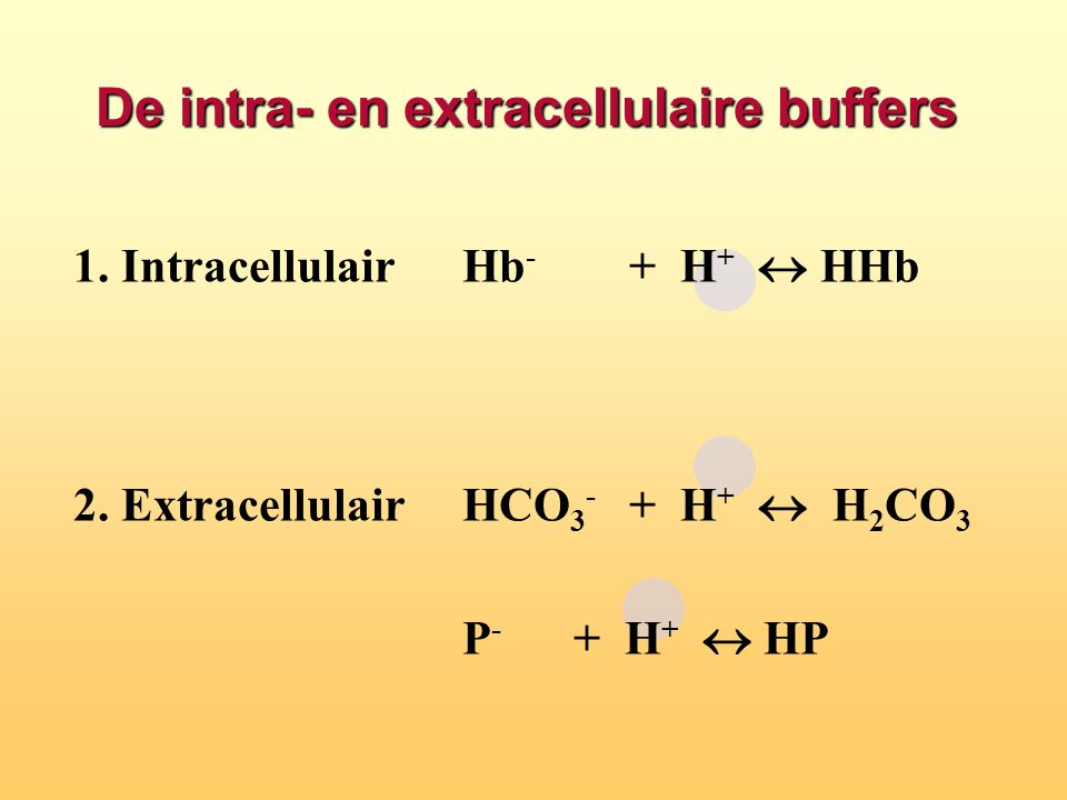 De intra- en extracellulaire buffers 1. IntracellulairHb - + H +  HHb 2. ExtracellulairHCO 3 - + H +  H 2 CO 3 P - + H +  HP