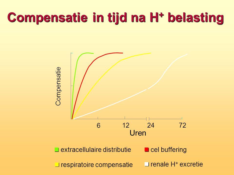 Compensatie in tijd na H + belasting 6 122472 Compensatie Uren n n cel buffering n n extracellulaire distributie n n respiratoire compensatie n n rena