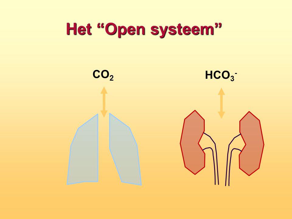 """Het """"Open systeem"""" CO 2 HCO 3 -"""