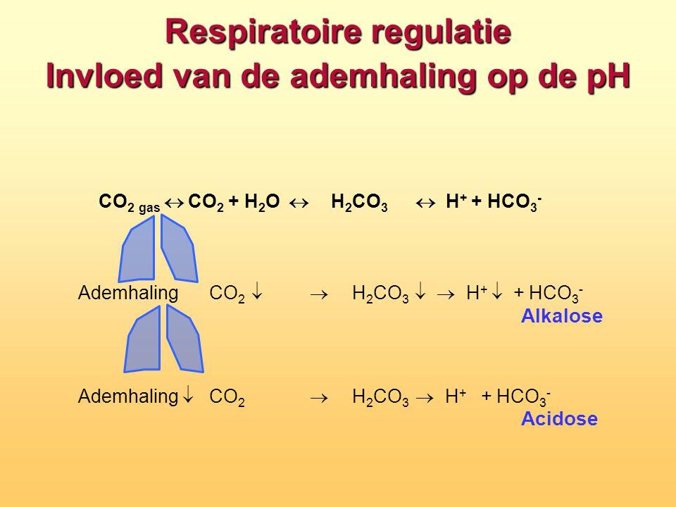 Respiratoire regulatie Invloed van de ademhaling op de pH CO 2 gas  CO 2 + H 2 O  H 2 CO 3  H + + HCO 3 - Ademhaling  CO 2   H 2 CO 3  H + 