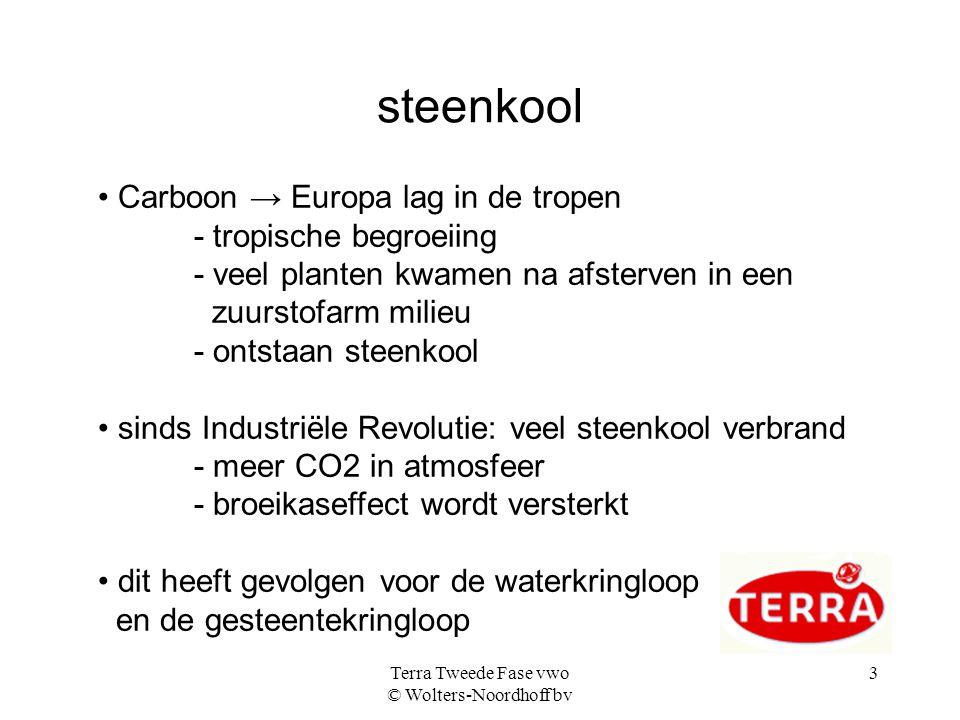 Terra Tweede Fase vwo © Wolters-Noordhoff bv 3 steenkool Carboon → Europa lag in de tropen - tropische begroeiing - veel planten kwamen na afsterven i