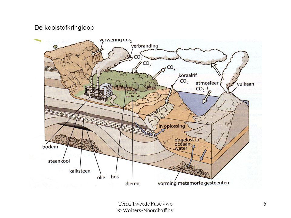 Terra Tweede Fase vwo © Wolters-Noordhoff bv 6 De koolstofkringloop