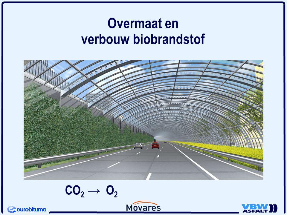 CO 2 → O 2 Overmaat en verbouw biobrandstof