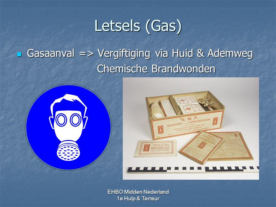 Letsels (Gas) Gasaanval => Vergiftiging via Huid & Ademweg Gasaanval => Vergiftiging via Huid & Ademweg Chemische Brandwonden Chemische Brandwonden EH
