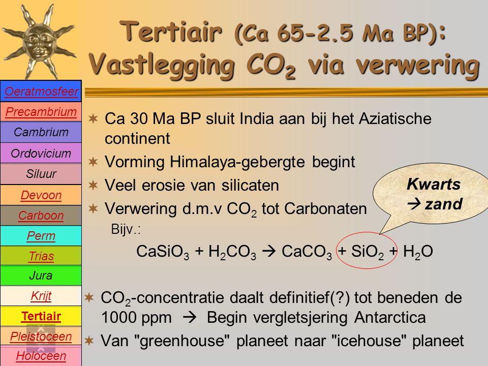 Tertiair (Ca 65-2.5 Ma BP) : Vastlegging CO 2 via verwering  Ca 30 Ma BP sluit India aan bij het Aziatische continent  Vorming Himalaya-gebergte begint  Veel erosie van silicaten  Verwering d.m.v CO 2 tot Carbonaten Bijv.: CaSiO 3 + H 2 CO 3  CaCO 3 + SiO 2 + H 2 O  CO 2 -concentratie daalt definitief(?) tot beneden de 1000 ppm  Begin vergletsjering Antarctica  Van greenhouse planeet naar icehouse planeet Kwarts  zand Precambrium Cambrium Devoon Carboon Perm Trias Jura Krijt Tertiair Pleistoceen Holoceen Ordovicium Siluur Oeratmosfeer