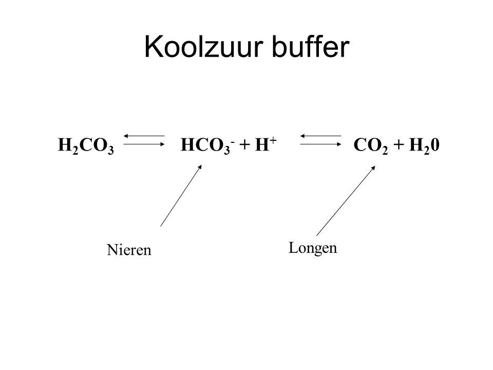 Koolzuur buffer H 2 CO 3 HCO 3 - + H + CO 2 + H 2 0 Nieren Longen
