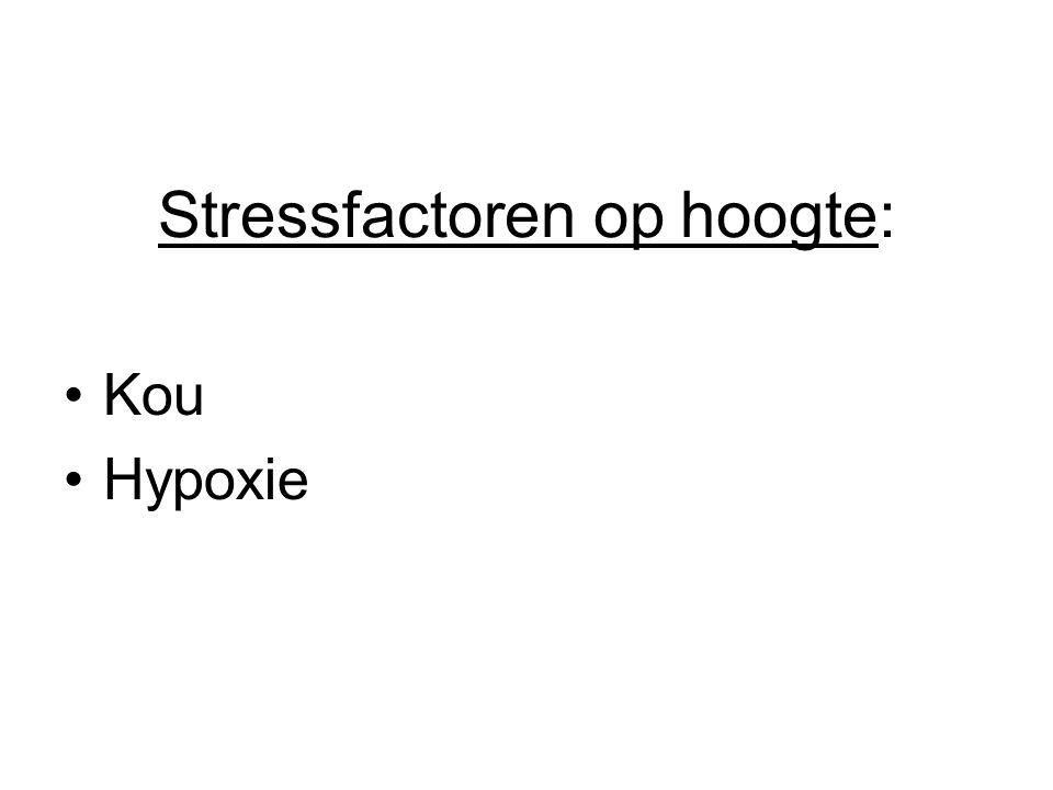 Stressfactoren op hoogte: Kou Hypoxie