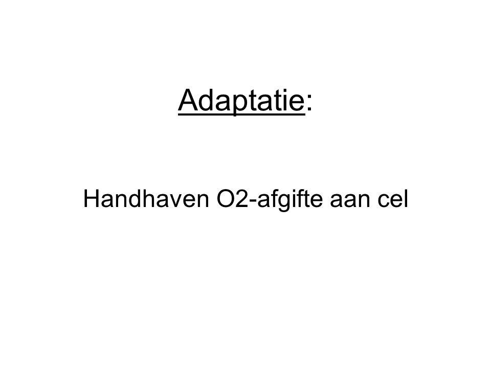 Adaptatie: Handhaven O2-afgifte aan cel