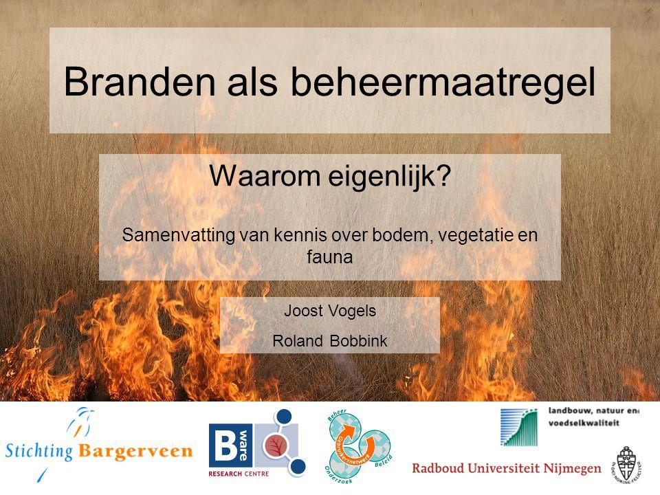 Branden als beheermaatregel Waarom eigenlijk? Samenvatting van kennis over bodem, vegetatie en fauna Joost Vogels Roland Bobbink