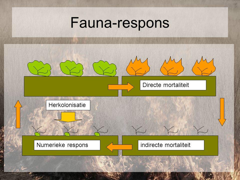 Directe mortaliteit indirecte mortaliteit Fauna-respons Numerieke respons Herkolonisatie