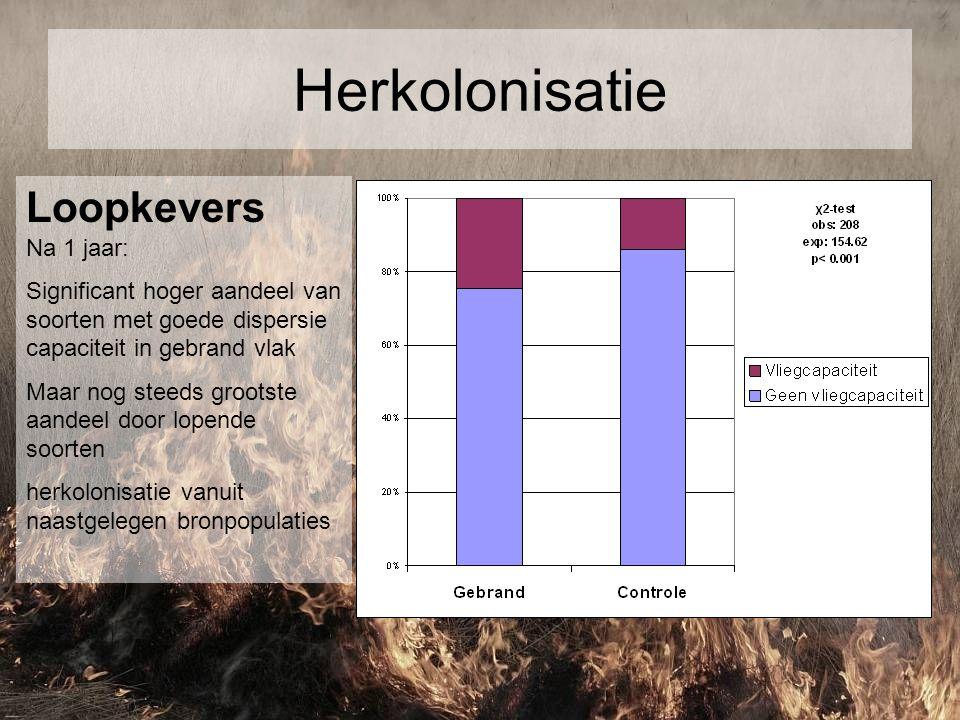Herkolonisatie Loopkevers Na 1 jaar: Significant hoger aandeel van soorten met goede dispersie capaciteit in gebrand vlak Maar nog steeds grootste aan