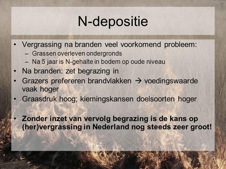 N-depositie Vergrassing na branden veel voorkomend probleem: –Grassen overleven ondergronds –Na 5 jaar is N-gehalte in bodem op oude niveau Na branden