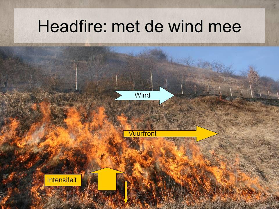 Headfire: met de wind mee Wind Vuurfront Intensiteit