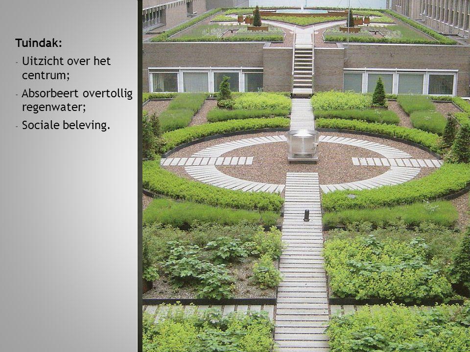 Tuindak: - Uitzicht over het centrum; - Absorbeert overtollig regenwater; - Sociale beleving.