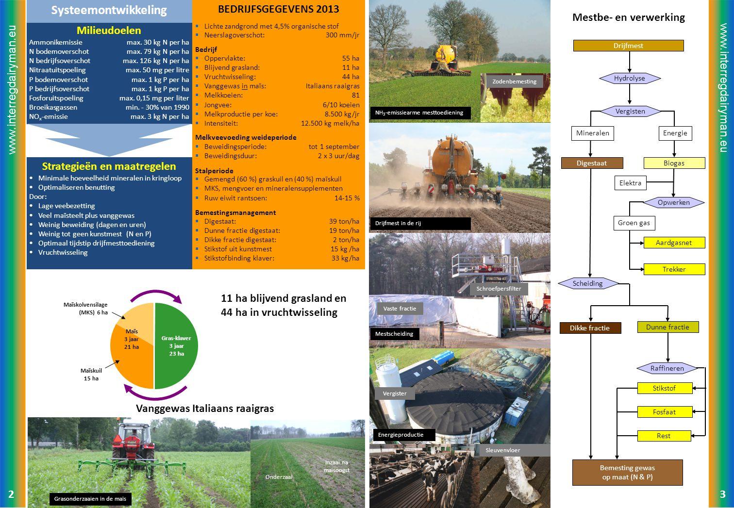 www.interregdairyman.eu BEDRIJFSGEGEVENS 2013  Lichte zandgrond met 4,5% organische stof  Neerslagoverschot: 300 mm/jr Bedrijf  Oppervlakte: 55 ha  Blijvend grasland: 11 ha  Vruchtwisseling: 44 ha  Vanggewas in maïs: Italiaans raaigras  Melkkoeien: 81  Jongvee: 6/10 koeien  Melkproductie per koe: 8.500 kg/jr  Intensiteit: 12.500 kg melk/ha Melkveevoeding weideperiode  Beweidingsperiode: tot 1 september  Beweidingsduur: 2 x 3 uur/dag Stalperiode  Gemengd (60 %) graskuil en (40 %) maïskuil  MKS, mengvoer en mineralensupplementen  Ruw eiwit rantsoen:14-15 % Bemestingsmanagement  Digestaat: 39 ton/ha  Dunne fractie digestaat: 19 ton/ha  Dikke fractie digestaat: 2 ton/ha  Stikstof uit kunstmest15 kg /ha  Stikstofbinding klaver: 33 kg/ha Milieudoelen Ammonikemissiemax.