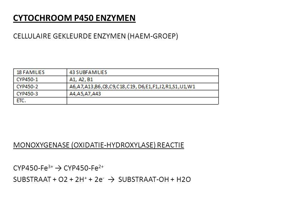 CYTOCHROOM P450 ENZYMEN CELLULAIRE GEKLEURDE ENZYMEN (HAEM-GROEP) MONOXYGENASE (OXIDATIE-HYDROXYLASE) REACTIE CYP450-Fe 3+ → CYP450-Fe 2+ SUBSTRAAT +