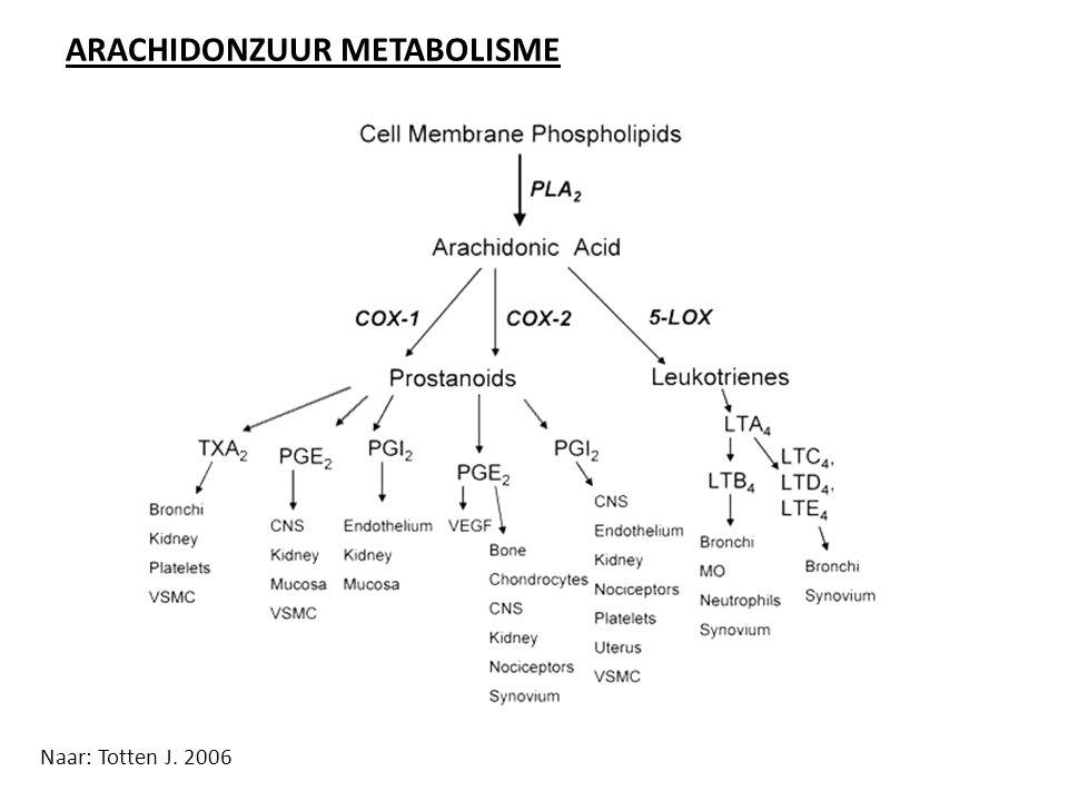 ENKELE OPMERKINGEN M.B.T.PIJNSTILLERS I.C.M. PSYCHOFARMACA NSAID s : o.a.