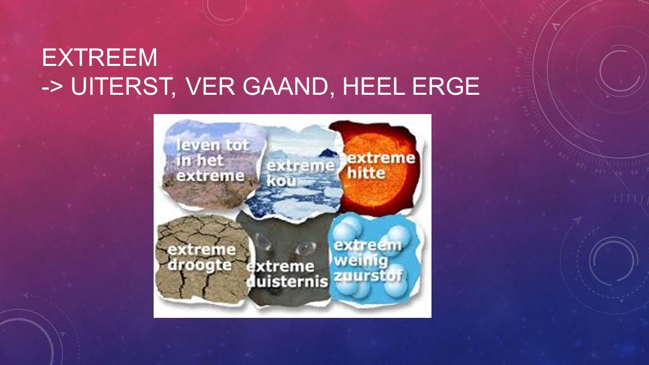 EXTREEM -> UITERST, VER GAAND, HEEL ERGE