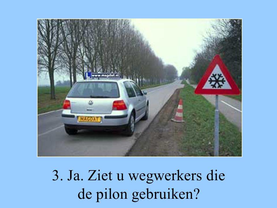 3. Ja. Ziet u wegwerkers die de pilon gebruiken?