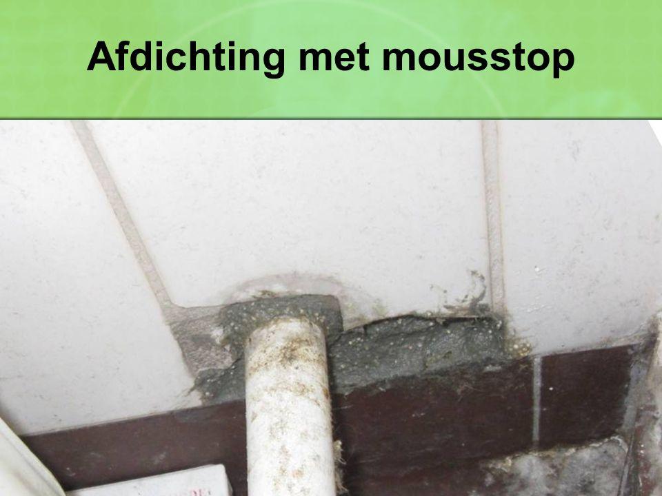 Afdichting met mousstop