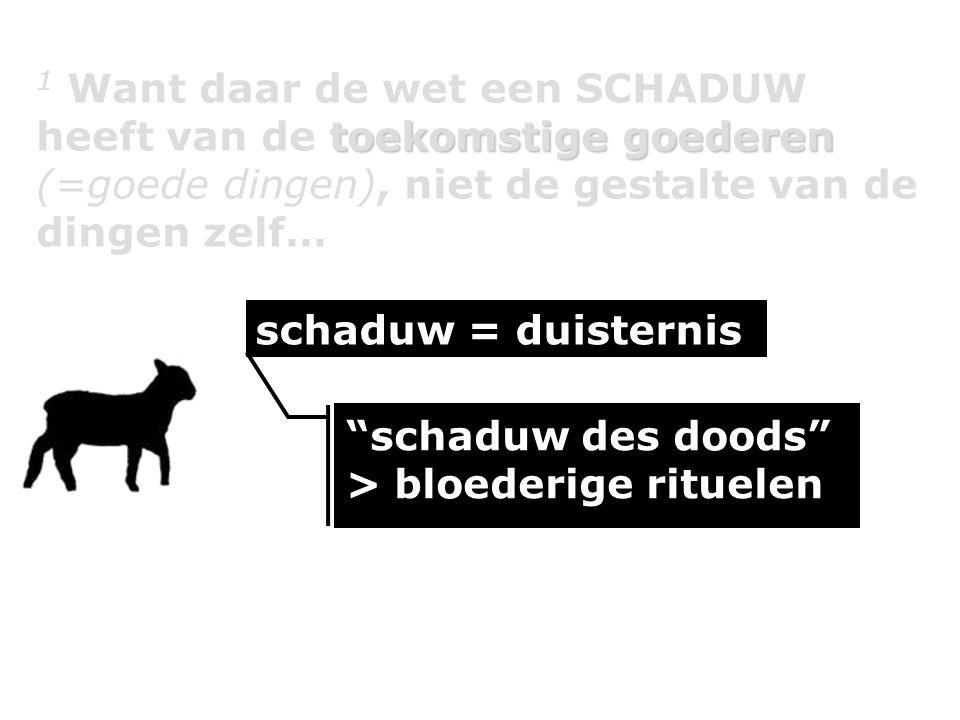 """schaduw = duisternis """"schaduw des doods"""" > bloederige rituelen schaduw = duisternis"""