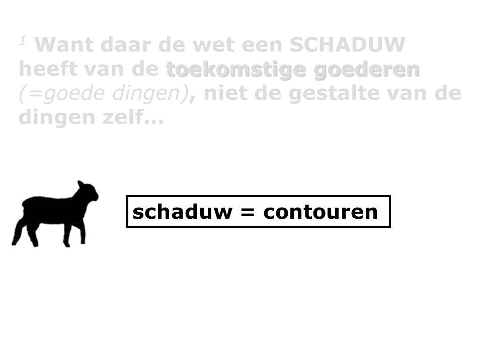 toekomstige goederen 1 Want daar de wet een SCHADUW heeft van de toekomstige goederen (=goede dingen), niet de gestalte van de dingen zelf… schaduw = contouren