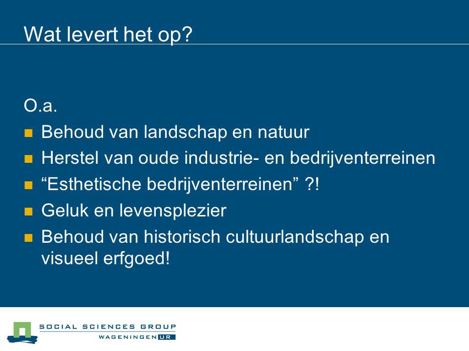 """Wat levert het op? O.a. Behoud van landschap en natuur Herstel van oude industrie- en bedrijventerreinen """"Esthetische bedrijventerreinen"""" ?! Geluk en"""