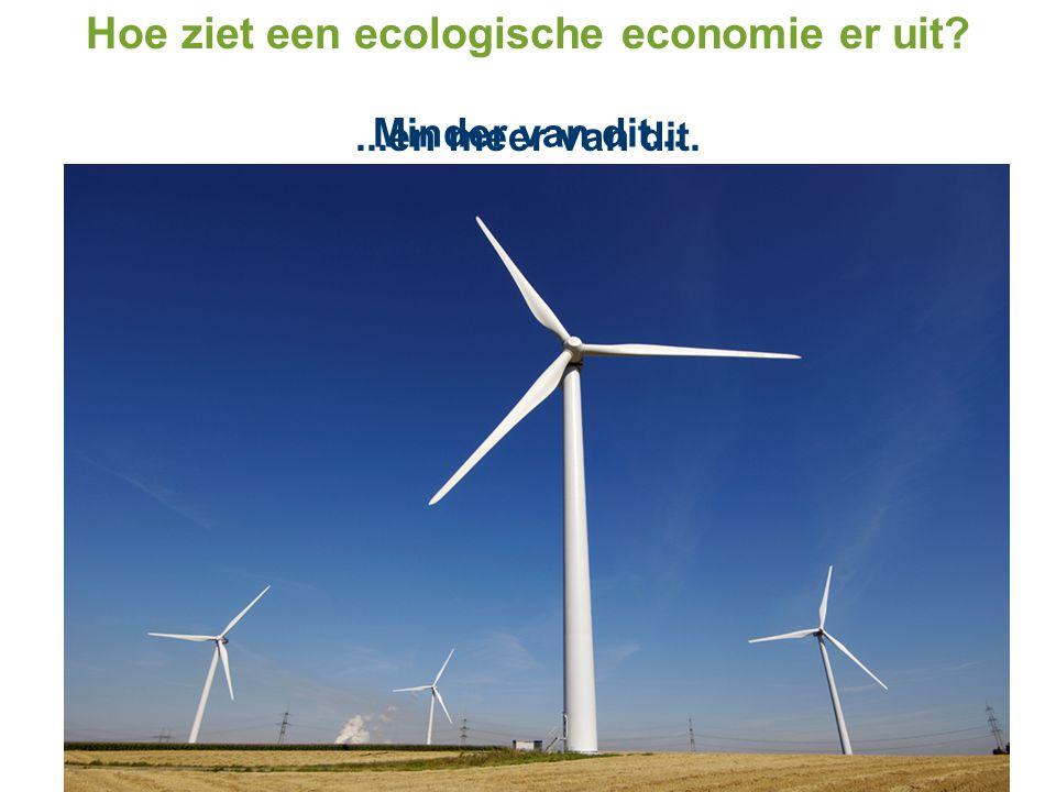 Hoe ziet een ecologische economie er uit? Minder van dit......en meer van dit.