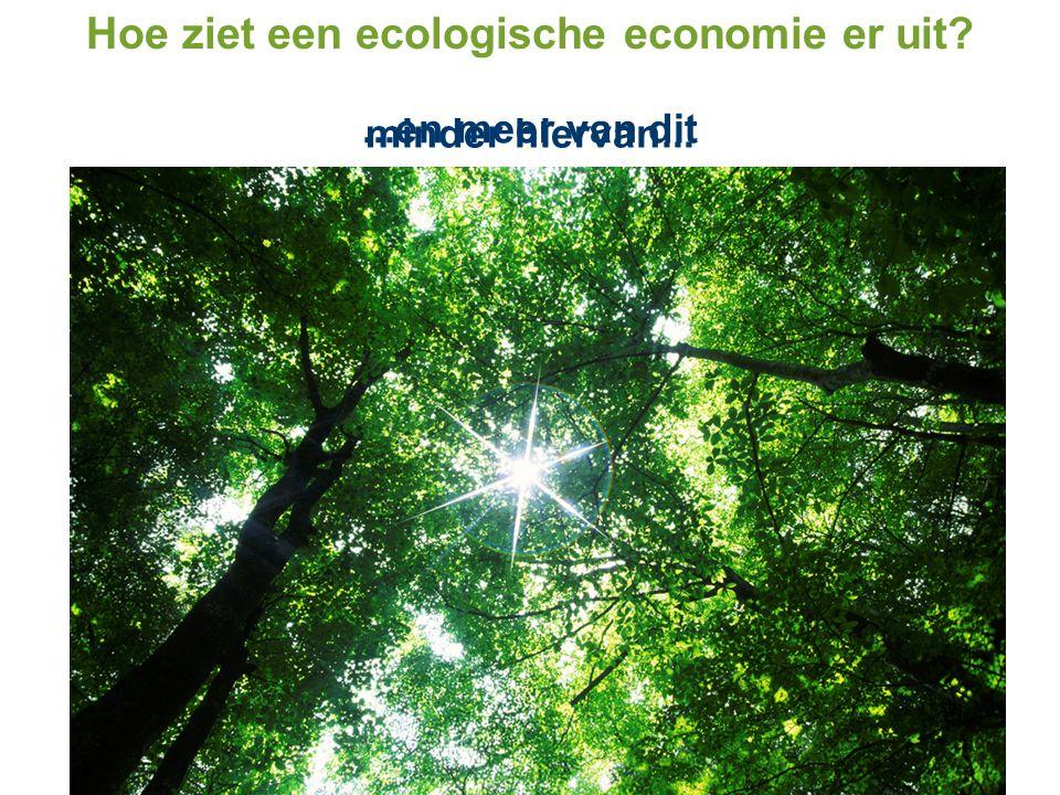 Hoe ziet een ecologische economie er uit? minder hiervan......en meer van dit