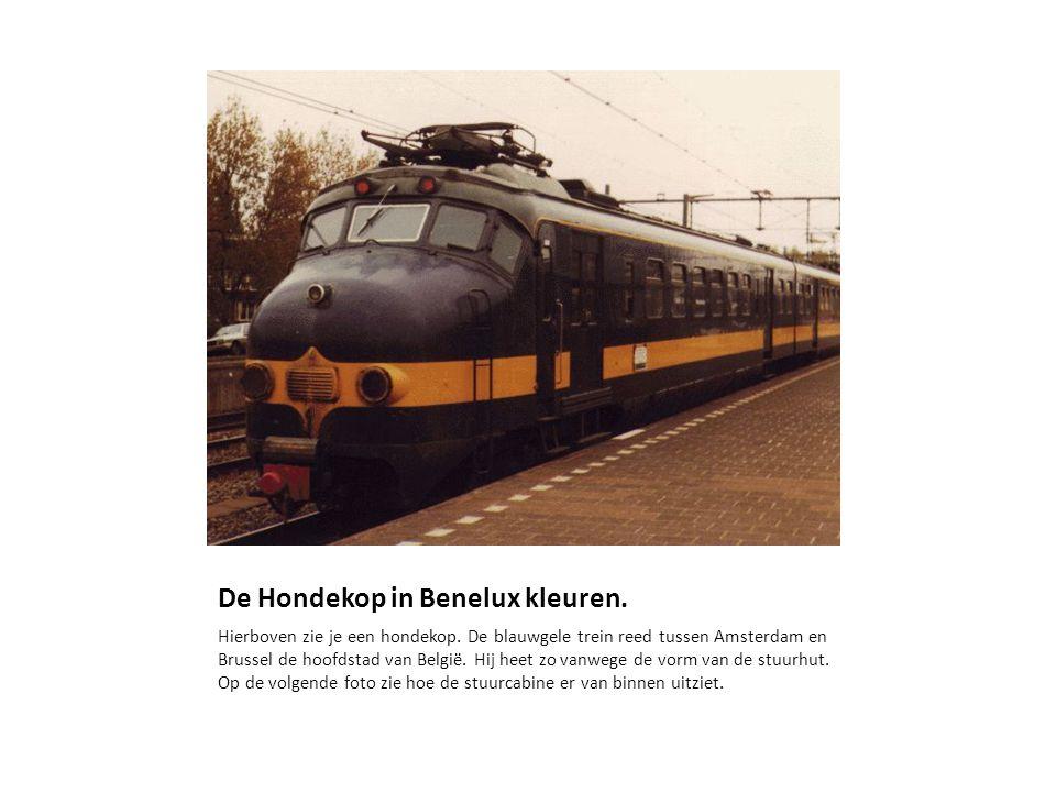 De Hondekop in Benelux kleuren.Hierboven zie je een hondekop.