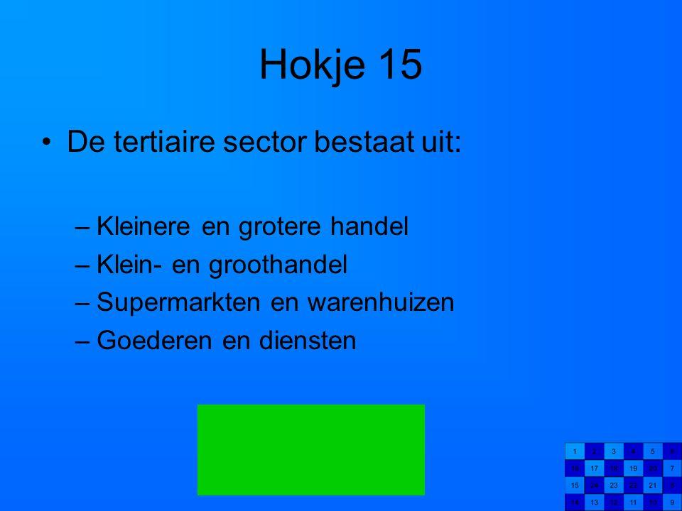 Hokje 15 De tertiaire sector bestaat uit: –Kleinere en grotere handel –Klein- en groothandel –Supermarkten en warenhuizen –Goederen en diensten