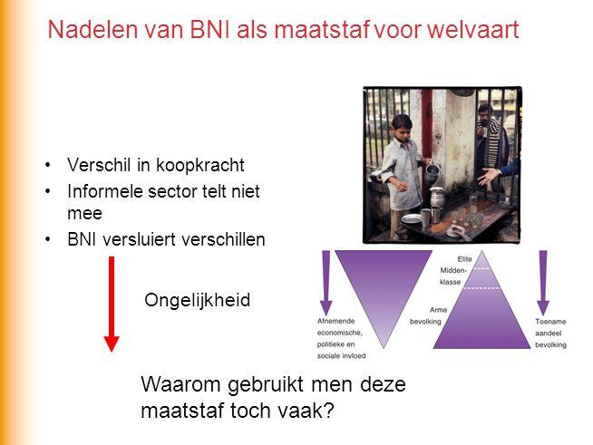 Verschil in koopkracht Informele sector telt niet mee BNI versluiert verschillen Ongelijkheid Nadelen van BNI als maatstaf voor welvaart Waarom gebrui