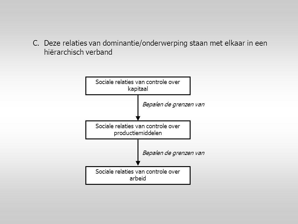 C.Deze relaties van dominantie/onderwerping staan met elkaar in een hiërarchisch verband Sociale relaties van controle over kapitaal Sociale relaties