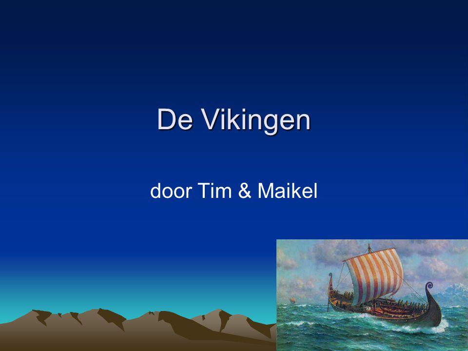 De Vikingen door Tim & Maikel