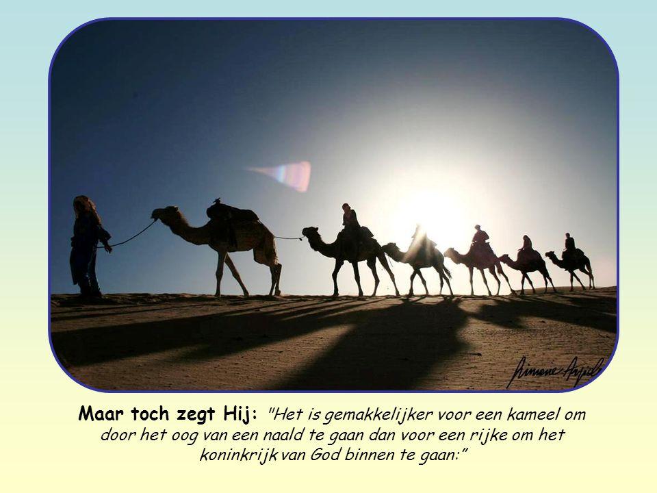Maar toch zegt Hij: Het is gemakkelijker voor een kameel om door het oog van een naald te gaan dan voor een rijke om het koninkrijk van God binnen te gaan: