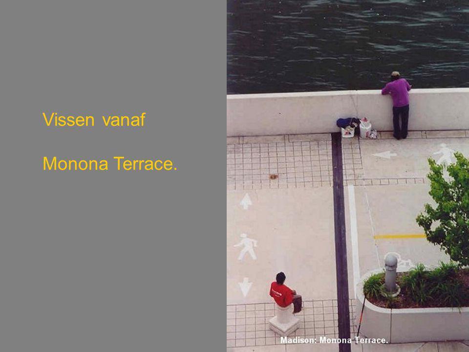 Vissen vanaf Monona Terrace.
