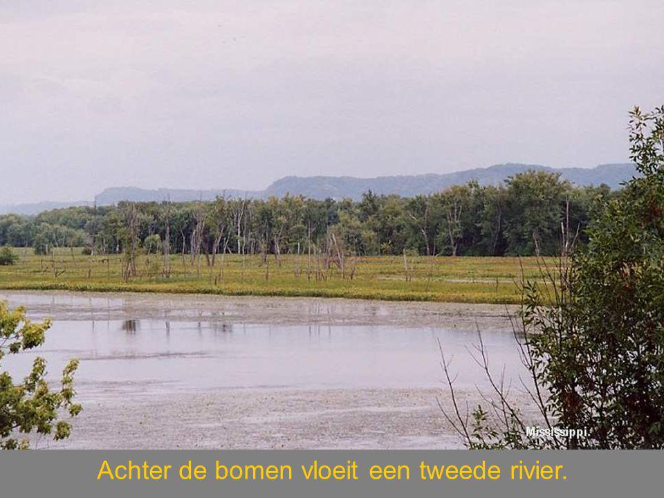 Achter de bomen vloeit een tweede rivier.