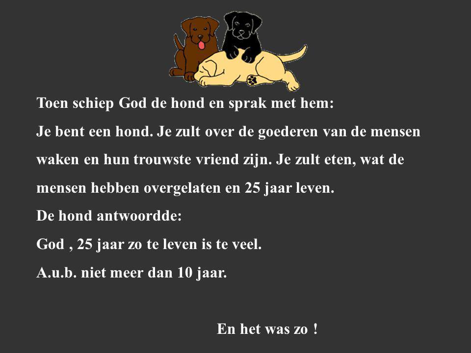 Toen schiep God de hond en sprak met hem: Je bent een hond.