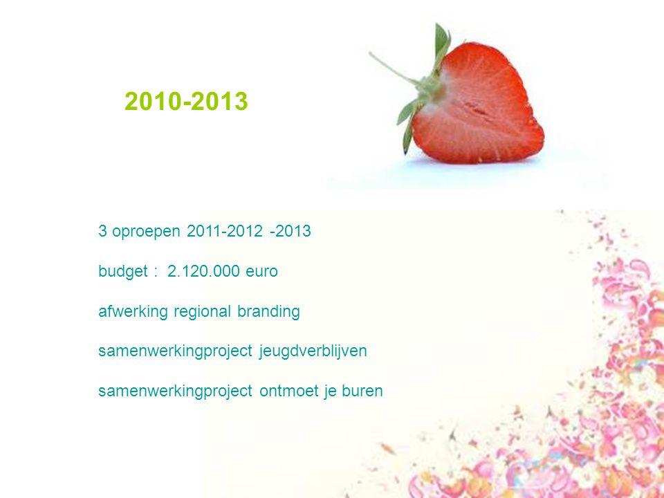 2010-2013 3 oproepen 2011-2012 -2013 budget : 2.120.000 euro afwerking regional branding samenwerkingproject jeugdverblijven samenwerkingproject ontmoet je buren