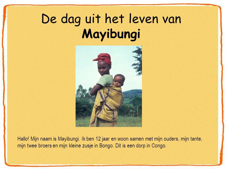 De dag uit het leven van Mayibungi Hallo.Mijn naam is Mayibungi.