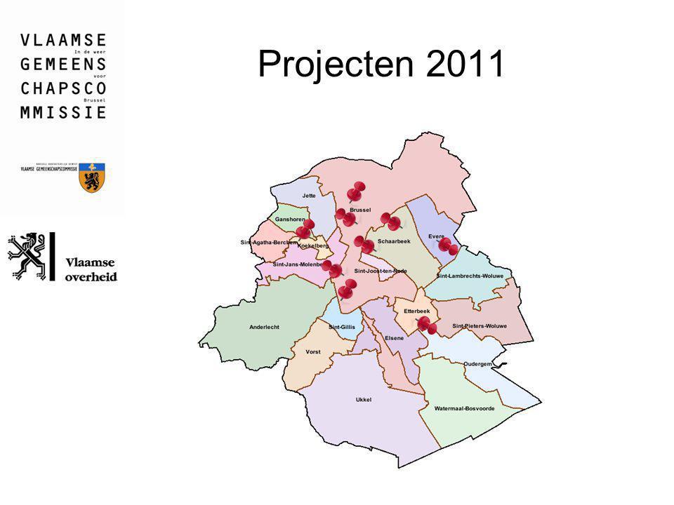 Projecten 2011