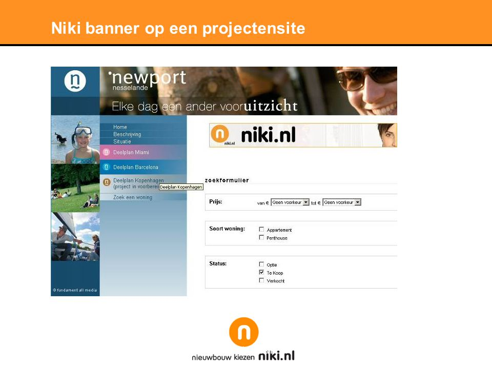 Stichting LNP Niki banner op een projectensite