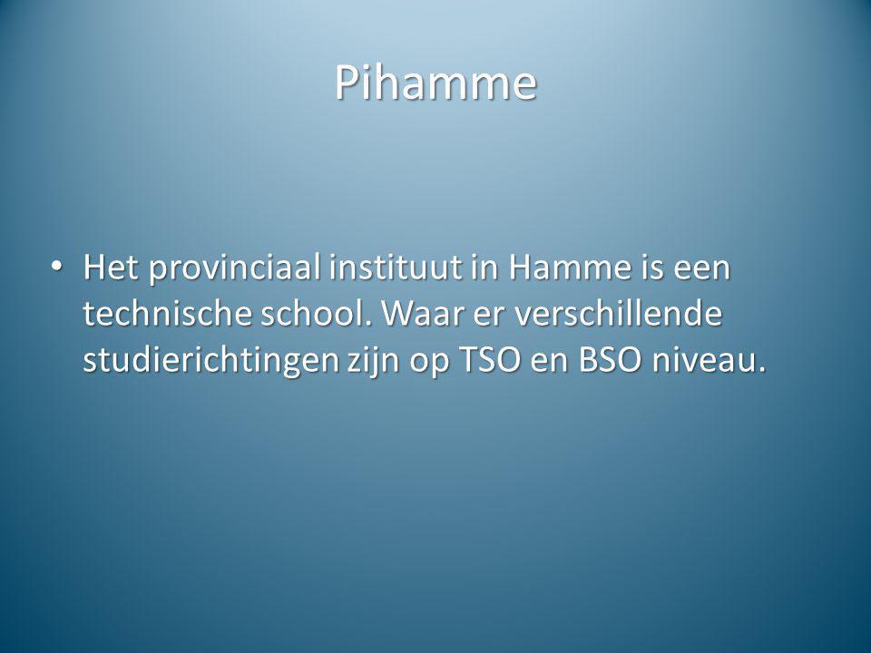 Pihamme Het provinciaal instituut in Hamme is een technische school. Waar er verschillende studierichtingen zijn op TSO en BSO niveau. Het provinciaal