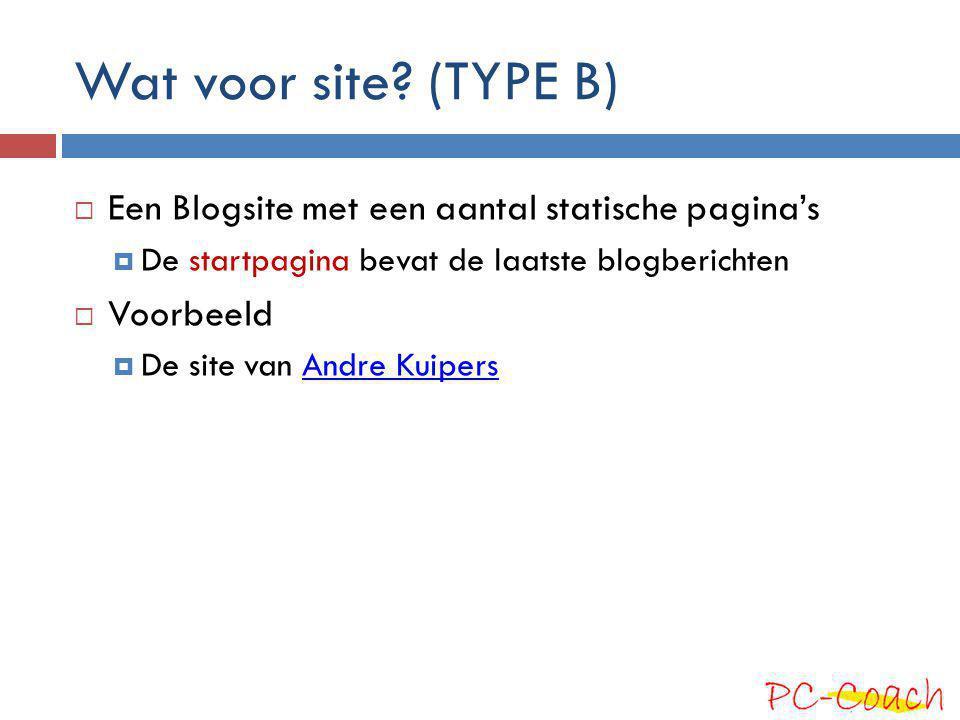 Wat voor site? (TYPE B)  Een Blogsite met een aantal statische pagina's  De startpagina bevat de laatste blogberichten  Voorbeeld  De site van And
