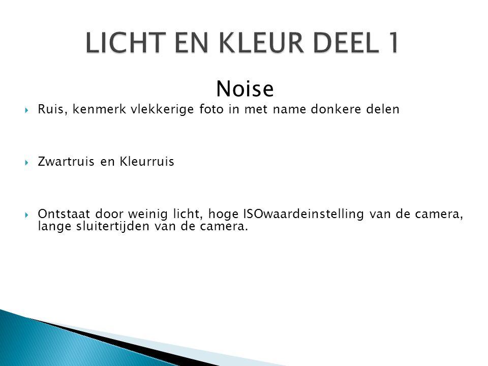 Noise  Ruis, kenmerk vlekkerige foto in met name donkere delen  Zwartruis en Kleurruis  Ontstaat door weinig licht, hoge ISOwaardeinstelling van de